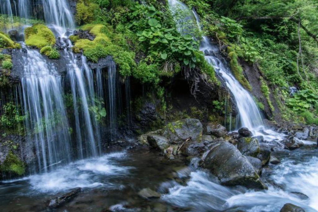 八ヶ岳 写真映え スポット 吐竜の滝1