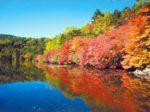 八ヶ岳周辺で紅葉が見られるおすすめスポット10選