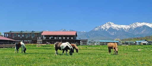 Nice stock farms in Yatsugatake Japan! Why don't you spend your weekend in huge and open stock farm.
