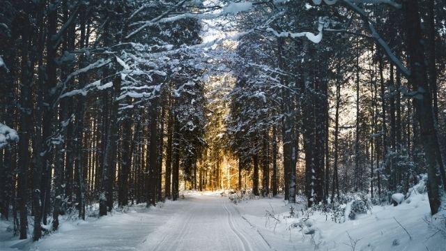 八ヶ岳周辺の冬に行きたい観光スポットまとめ!