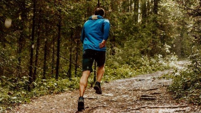 八ヶ岳のトレイルランニングについて!参加資格、難易度、参加費は?