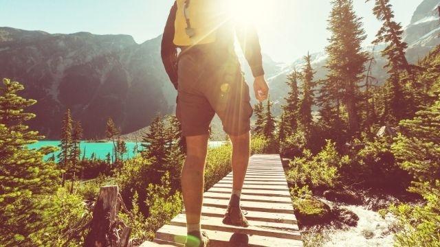 八ヶ岳ハイキングを楽しめるコースはどこ?ペットも一緒に楽しめる場所をご紹介!