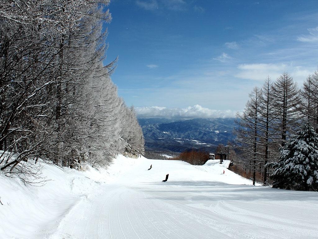 从大人到小孩都可以尽情享受!八岳周边的滑雪场特别篇!