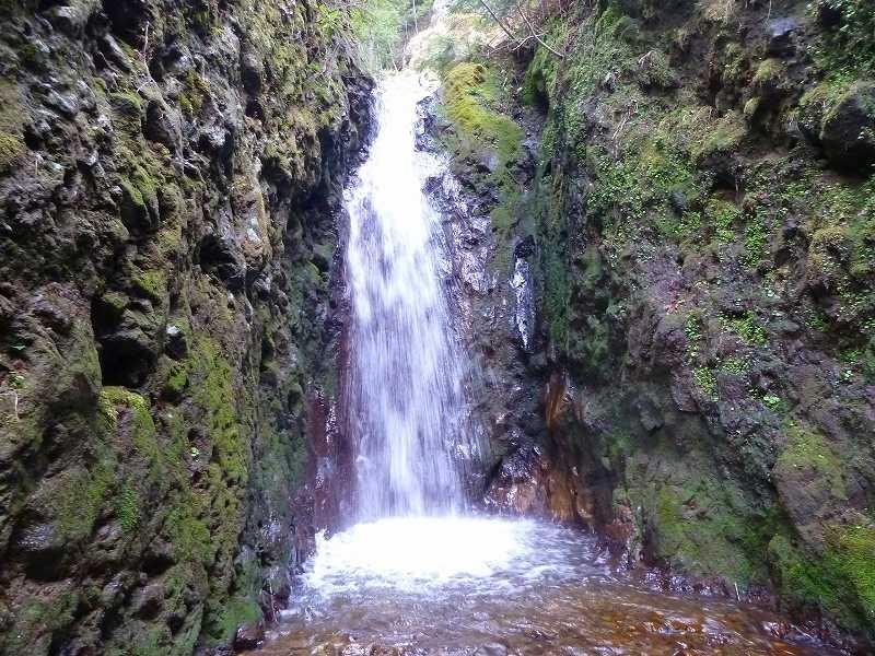 八岳周边值得一去的溪流!在此尽享戏水・垂钓的乐趣