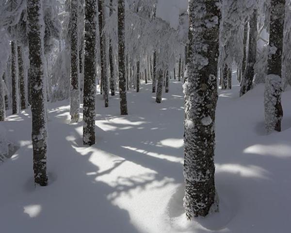 北横岳の雪山