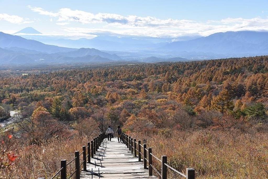 八ヶ岳は観光におすすめ!さまざまなジャンルのおすすめスポット3選を紹介!