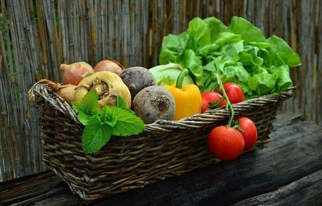 八ヶ岳の高原野菜直売所特集!新鮮な野菜がその場で楽しめるスポットも!